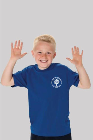 Holly Trees Primary - PE T-Shirt in house colours