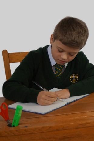st peters billericay year 4 homework
