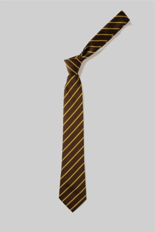 Wickford C of E - Elasticated School Tie