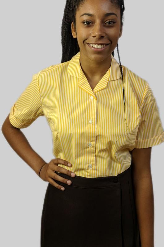 yellowstripedshirtfront3.jpg